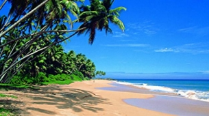Global Explorers Destination Sri Lanka